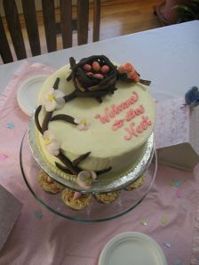 Welcome to the Nest Baby Shower Cake