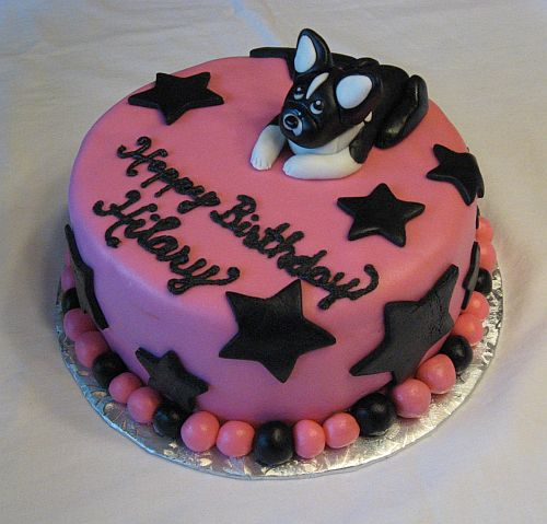 Boston Terrier Birthday Cake York College Delivery