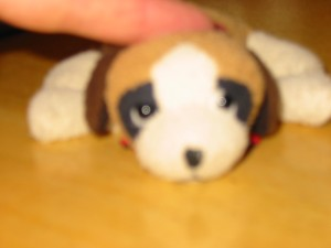 Little Dog  for a little boys birthday!  This cute puppy stuffed animal has been around since he was little baby!!  What a great Custom Cake idea!