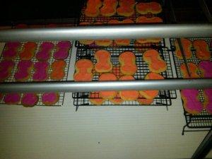 Peek at the Sugar Cookies drying on racks in our display case